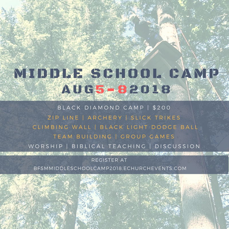 MS Camp Flyer 2018